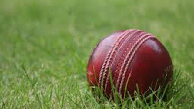 CricketFilePhoto-1