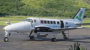 HummingBirdAir-RLB